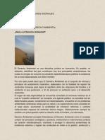 Tarea 1 DEFINICIONES DE DERECHO AMBIENTAL.docx