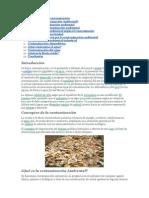 Conceptos de la contaminación.docx