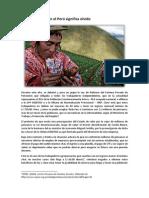 El sector agrario y las AFP - por Andrea Ayanz.docx