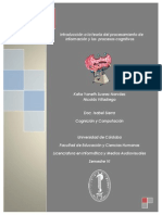 Procesos Cognitivos- Katia Suarez Narvaez- Nicolas Villadiego VI Semestre.pdf