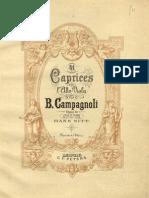 CAMPAGNOLI.pdf
