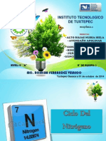 ciclo del nitrogeno.pptx