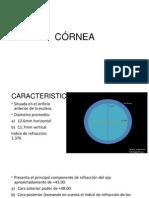 CORNEA 2.pptx