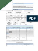 Formato CV.xls