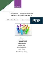 FORMACION Y COORDINACION DE GRUPOS O EQUIPOS LABORALES. (INFORME).docx