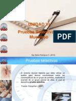 AUDITORIA Unidad V -Pruebas selectivas y muestreo.ppt