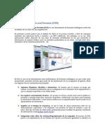 Sistemas_...pdf