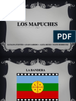 LOS MAPUCHES.ppt