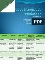 Ejemplos de Sistemas de Producción.pptx