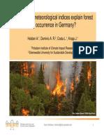 Holsten_etal_Forest_Fires_IGC2012.pdf