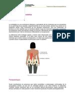 Lumbalgia (1).pdf