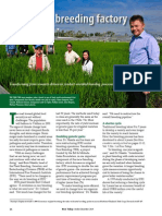 Rice Today Vol. 13, No. 4 IRRI's new breeding factory