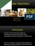 anestesiologia apresentação.pptx