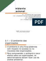 3-oambienteorganizacional-120604191641-phpapp02.pdf