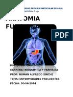 Anatomia Funcional,Bioquimica y Farmacia Paralelo B___JOSUE ORDOÑEZ ENFERMEDADES FRECUENTES_2.doc