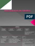 Actos.pdf