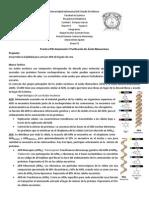 Practica Nº6 Aislamiento Y Purificacion De Acido Ribonucleoico - copia.docx