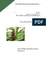 44 D.F. Amarantoc cultivo.docx