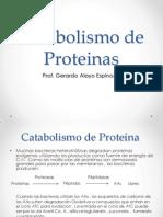 Clase 04 (02) - Catabolismo de Proteina.pptx