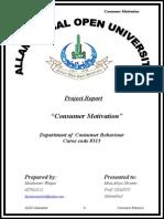 Consumer Motivation 1