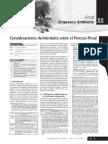Informe  - Foy.pdf