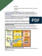 Curso Elemental de Gemologi  Para Principiantes 7192bdc736e