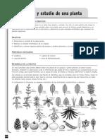 1ESOCN07_CPL_ES17.pdf