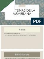 Proteínas de la membrana (1) (2) (1) (1).pptx