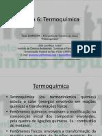 Aula 6 (Termoquímica) – Físico-química.pdf