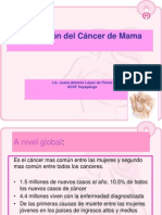 1. Prevencion del cancer de mama FEDECREDITO 16-10-2013.ppt
