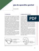 cap_02.pdf