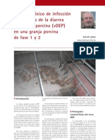 Cría y Salud 28_66-70_Un caso clínico de infección por el virus de la diarrea epidémica porcina (vDEP) en una granja porcina de fase 1 y 2