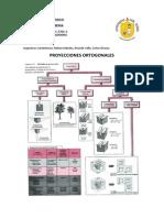 CLASE 4 Y 5 DIBUJO.pdf