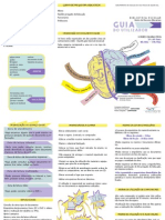 Guia do Utilizador.pdf