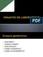D2. Ensayos de laboratorio.pptx