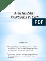 APRENDIZAJE PRINCIPIOS Y LEYES.pdf