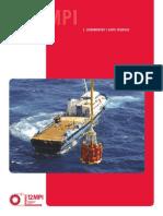 Lineamientos_y_Guias_Tecnicas__12MPI.pdf