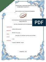 IF - AUDITORIA GUBERNAMENTAL  - I UNIDAD -.pdf