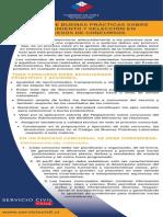 7_Separata Decalogo Buenas Practicas Reclutamiento y Seleccion en Procesos de Concursos.pdf
