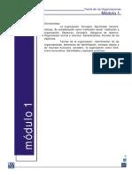 Teoria-organizaciones-apunte.pdf