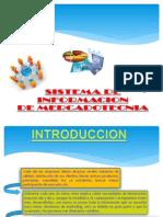 sistemas_de_informacion.ppt