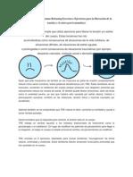Pagina web argentina.docx