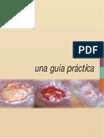 19. GUIA PRACTICA HERIDAS.docx