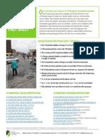 Safe Crossings Fact Sheet