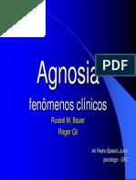 Agnosia_Ari_Balieiro_2008no.pdf