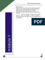 microempredimiento-apunte.pdf