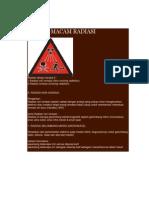 MACAM radiasi