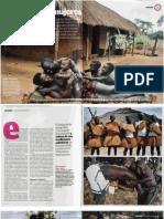GUINEA BISSAO.pdf