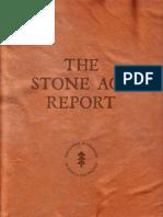 NextGen Climate Stone Age Report