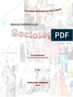 sociologia 2.docx